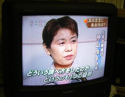 kap061011-tv.JPG